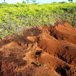 About 23.5 percent of Yap Proper has degraded volcanic soils.